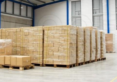 WTO Srbija proširuje spektar svojih usluga - Uvedena usluga paletizacije zbirnih pošiljki